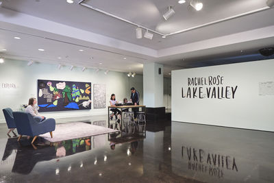 **Installation view, *Rachel Rose: Lake Valley***, El Paso Museum of Art, January 24 - August 16, 2020. Photograph by Alex Marks.
