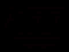 The El Paso Electric Company
